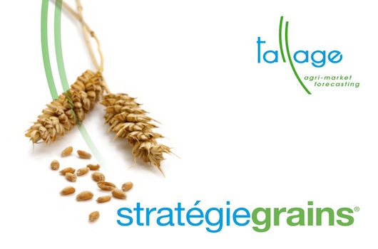 Strategie Grains - Grain & Oilseed Reports